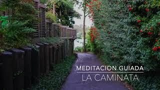 LA CAMINATA: Meditacion Guiada de 3 Minutos | A.G.A.P.E. Wellness