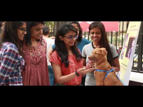 Pet-A-Thon - Stray Pet's Adoption Camp In Mumbai @BookASmile