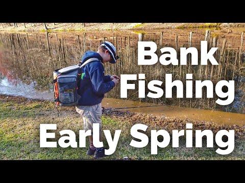 Spring Bank Fishing For Largemouth Bass - Pond Fishing