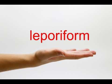 How to Pronounce leporiform - American English