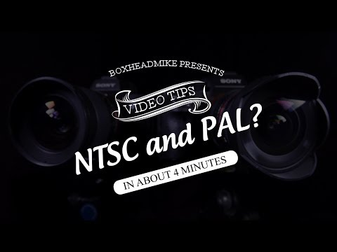 Sony Pal Vs Ntsc