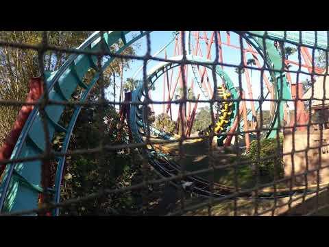 Roller coaster Busch Gardens Tampa