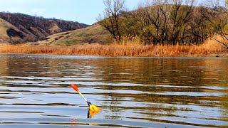 Рыбалка на поплавок весной на КРАСИВОЙ РЕКЕ