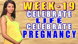 Pregnancy Information Week 19 CLCP Thumbnail