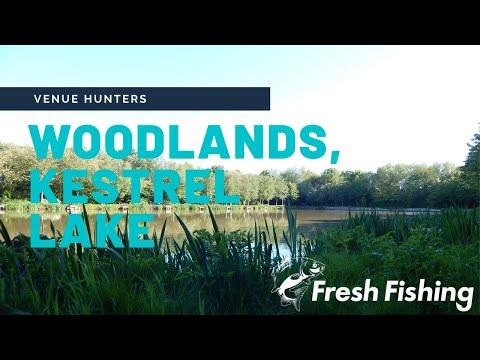 Woodlands Fishing Lakes, Kestrel Lake, Thirsk - Coarse Fishing Day Session