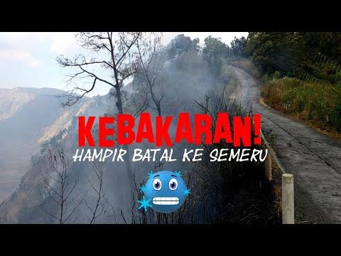 Nyaris Batal Ke Semeru - Kebakaran Hutan 😰 (Part 1: Ranu Pani - Kalimati)