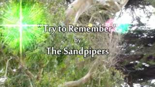 Watch Sandpipers Try To Remember video