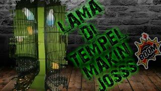 Download lagu SISTEM TEMPEL BETINA SAKIT KEPALA Budi Geo vlog