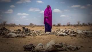 Looming Famine in Somaliland