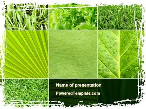 Agronomy and agriculture powerpoint template by poweredtemplate agronomy and agriculture powerpoint template by poweredtemplate youtube toneelgroepblik Choice Image