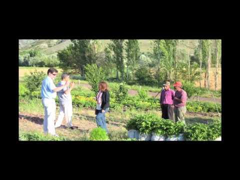 Turkish Organic Farm