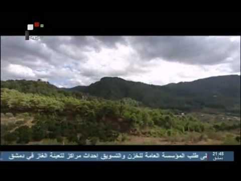 Syria patriotic song on tv