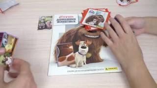 Тайная жизнь домашних животных. Собираем коллекцию наклеек, часть 2