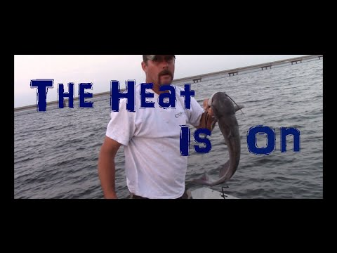 60lb Lake Fork Flathead Catfish, Guide Kenneth Jones from YouTube · Duration:  1 minutes 35 seconds  · 1,000+ views · uploaded on 4/23/2009 · uploaded by LakeForkMarina