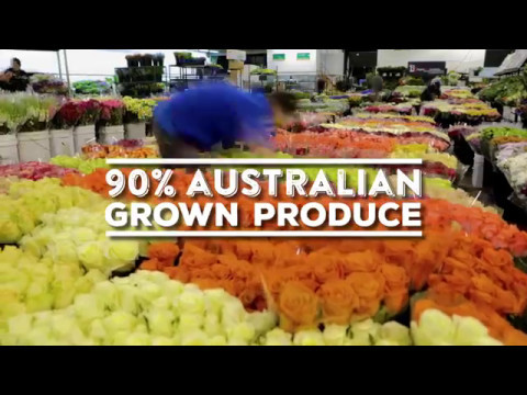 Sydney Markets Introduction 2017