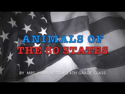 Animals of the 50 States
