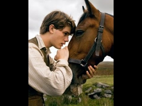 Image result for horse human love