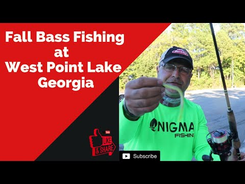 Fall Bass Fishing At West Point Lake, Georgia - Lures And Rods Setups
