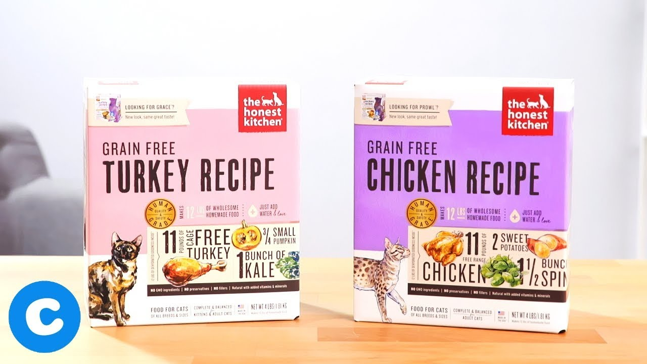 The Honest Kitchen Grain Free Dehydrated Cat Food Youtube
