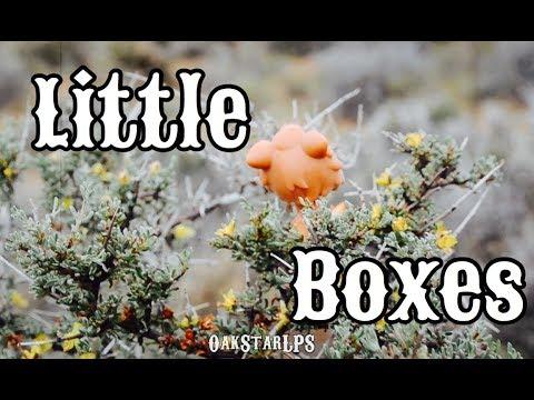 """LPS: """"Little Boxes"""" MV"""