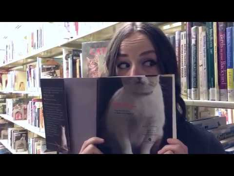Kansas City Public Library's Cat Video