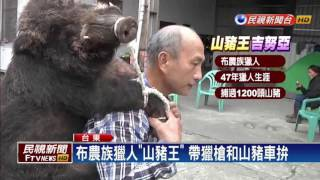 大山豬屢毀農作 「山豬王」出招逮兇手-民視新聞