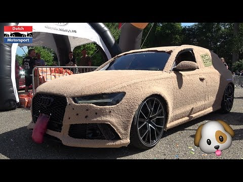 Audi Rs6 Transformed Into The Dumb And Dumber Shaggin Wagon Carbuzz