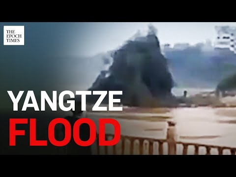 Flooding in Chongqing and Wuhan Uprooted Huge Trees |Yangtze River |Epoch News