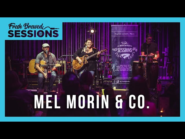 Fresh Brewed Sessions I Mel Morin & CO. I Hot Toddy