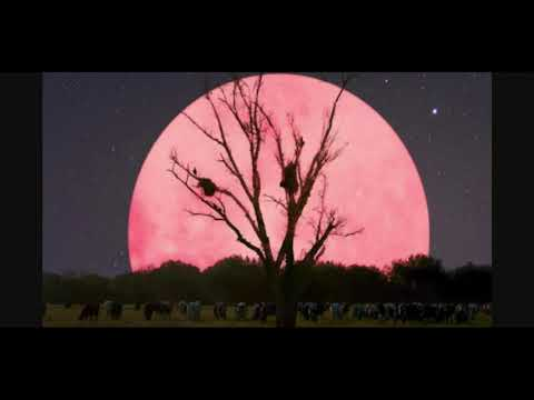 Pink Moon (Super Moon) April 26th