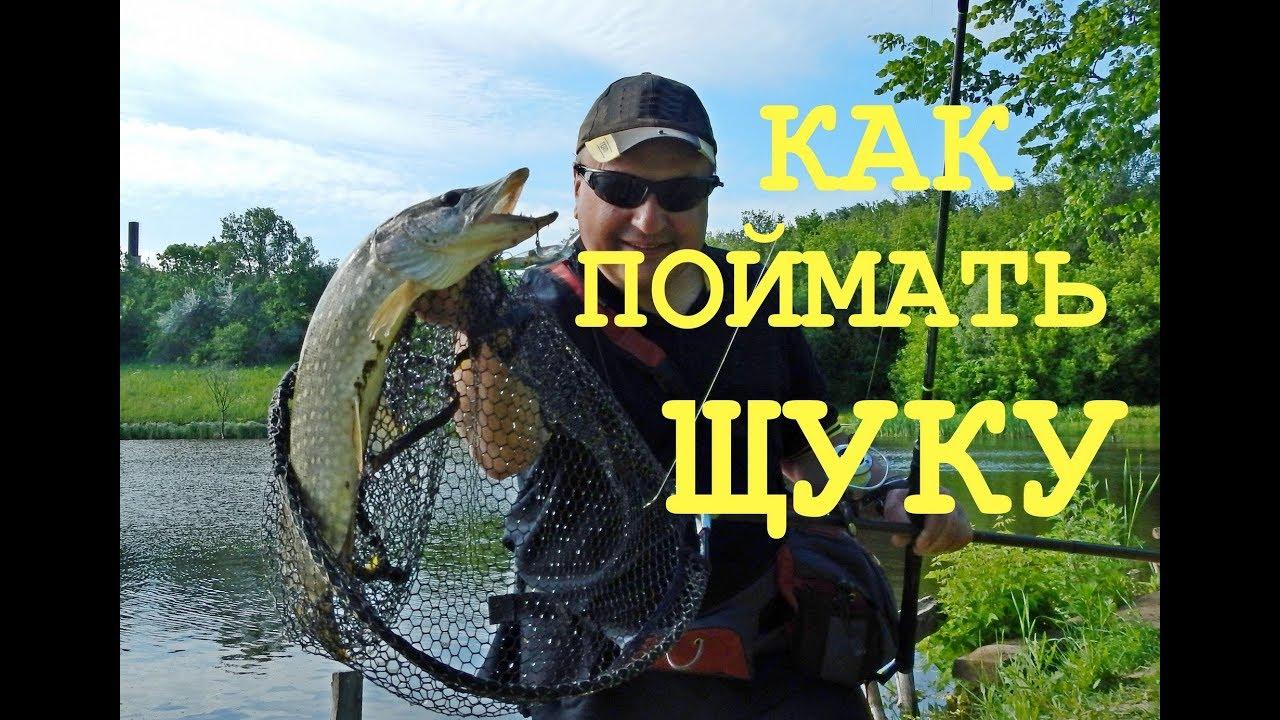 ДЖИГ-РИГ или ТОКИО-РИГ! Щука и сом на ЧУПА ЧУПС! Рыбалка летом.