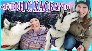 СЕЛФИ С ХАСКАМИ / selfie with husky / selfie mit huskies   Liliya and IrinaGrace