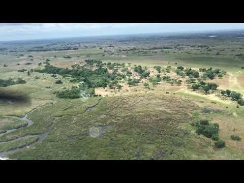 Bush Take Off - Botswana