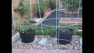 Gardening Tips 2013_04_Garden Tour