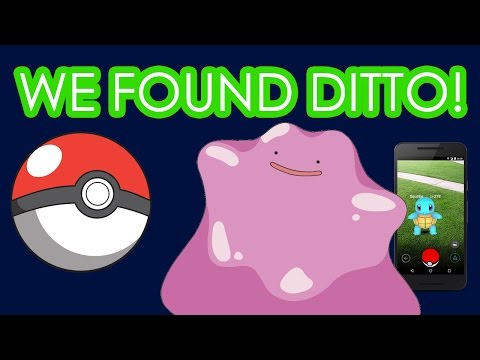 how to catch a ditto