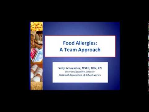 Food Allergy Safety at School: A Webinar