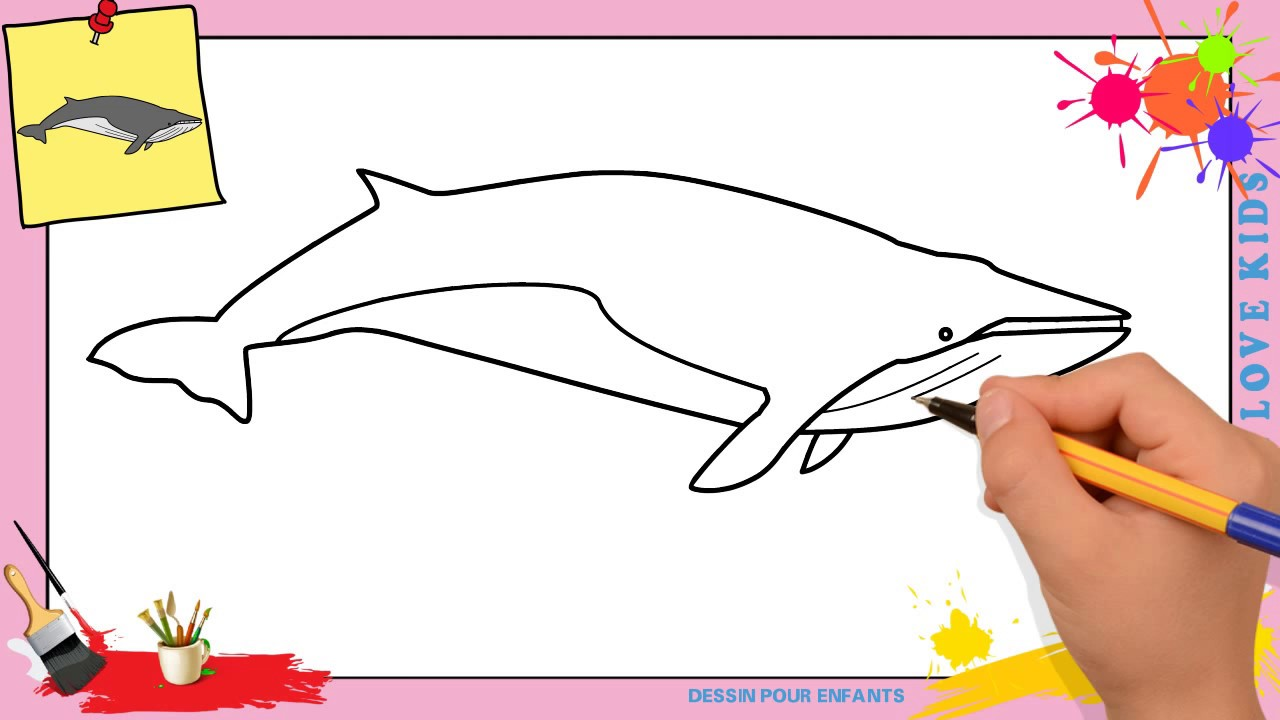 Dessin Baleine Facile Comment Dessiner Une Baleine Facilement Etape Par Etape Youtube