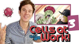 "Real DOCTOR reacts to CELLS AT WORK! // Episode 3 // ""Influenza"""
