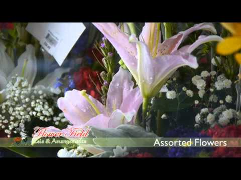 Flower Field Florist | Leis, Bouquets, Arrangements, Flowers for All Occasions | Honolulu, Hawaii