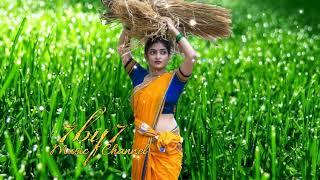 ஏ சம்பா நாத்து சாரல் காத்து    Tamil Echo Songs    Cheran Pandiyan Tamil Movie Songs