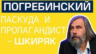 Погребинский это паскуда и пропагандист — Шкиряк