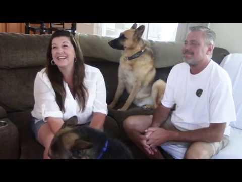 Tim Conway Jr - Westside German Shepherd Rescue Is Making An Impact In Los Angeles