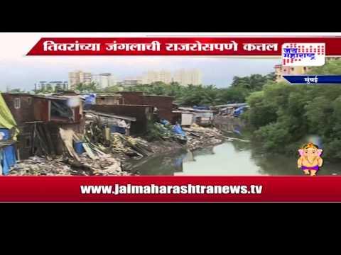 illegal construction on gorai khadi