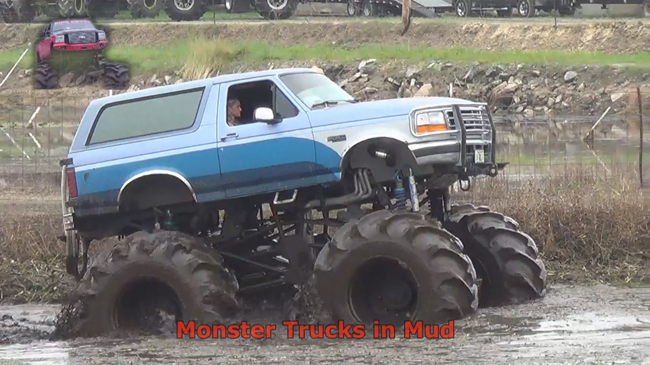 Ford bronco monster truck