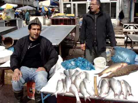 Fish Market-Bandar Anzali.MPG