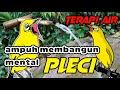 Terapi Air Terapi Pleci Macet  Mp3 - Mp4 Download