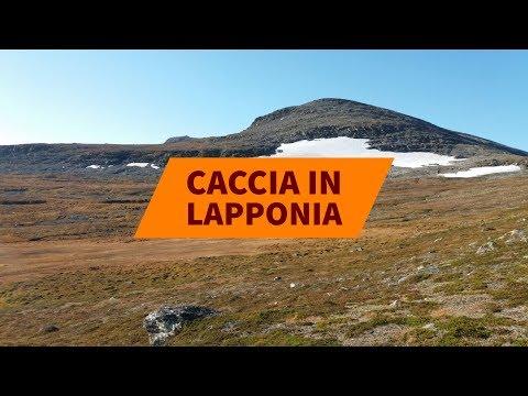 Caccia in Lapponia con Lugaresi Tour Operator