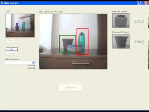 Evolved chemotaxi behavior (1080p 60fps)
