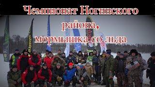 Чемпионат Ногинского района, мормышка со льда