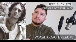 Vocal Coach Reacts! Jeff Buckley! Dream Brother! Live!